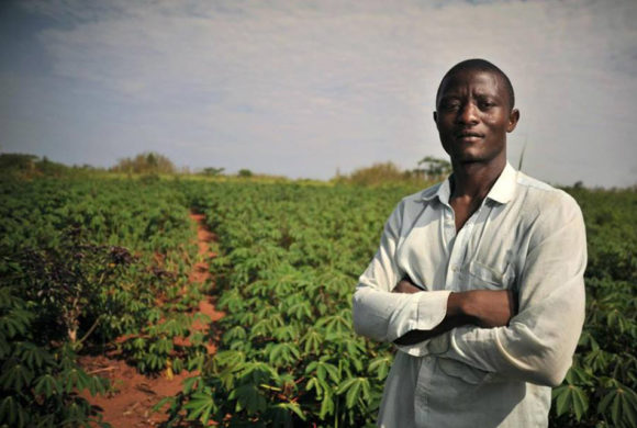 Non c'è solo lo sfruttamento: il lavoro dei migranti nell'agricoltura sociale nel sud Italia